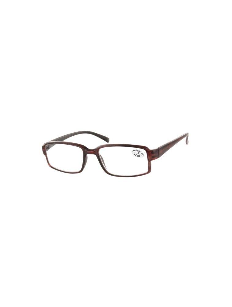 Gafas de Lectura Premontadas L46 Marron