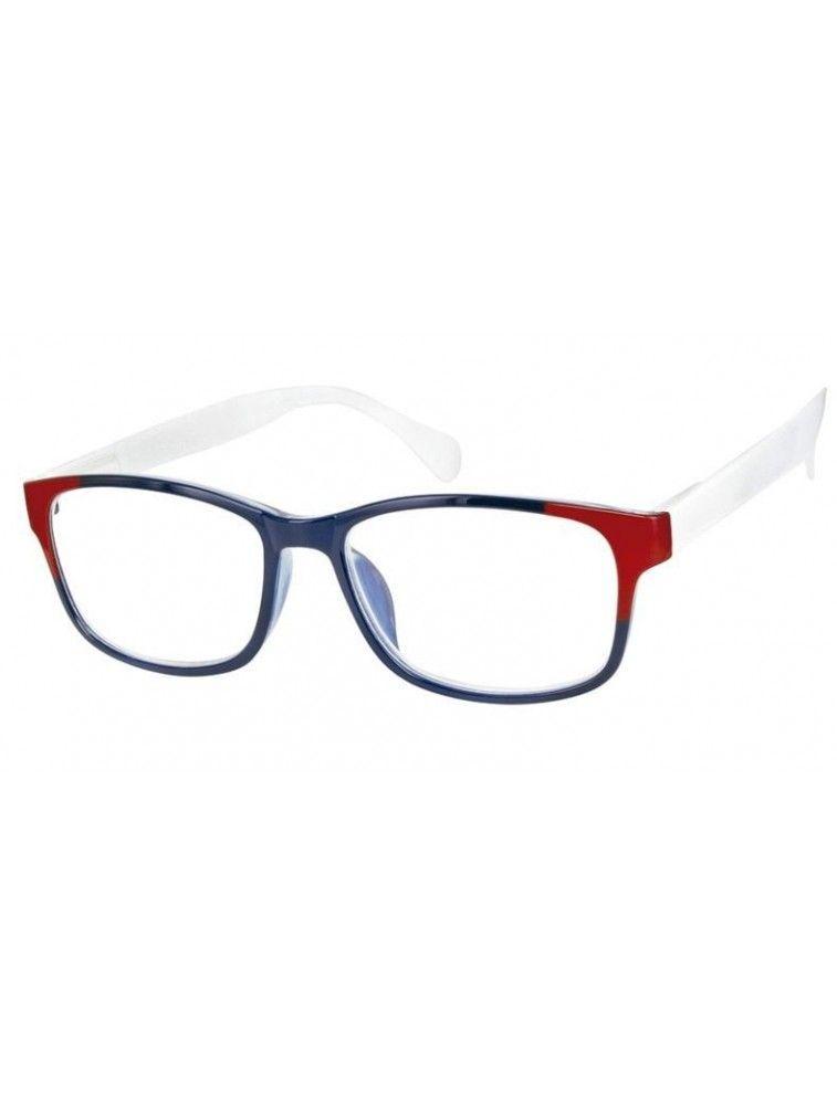 Gafas de Lectura Premontadas L31